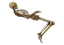 Dancing Skeleton Stock Photos
