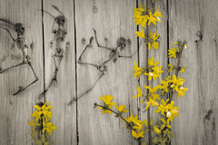 Dancing Skeleton Flowers Stock Images