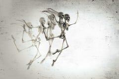 Dancing Skeleton Stock Image
