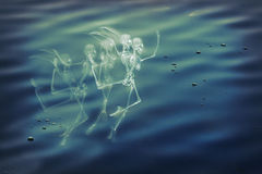 Dancing Skeleton Water Stock Images