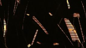 Dancing Sparks. A close-up of dancing fire sparks isolated on a night time background of black. The orange light of a flickering particle stock video footage