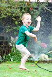 Dancing in the sprinkler. Happy little boy dancing in the spray from the sprinkler system in the back garden Royalty Free Stock Photo