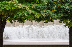 Dancing water framed by trees Royalty Free Stock Photo