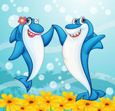 Dancing whale fishes Stock Images