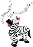 Dancing zebra Stock Images