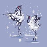Dancingowi Japońscy żurawie w śniegu royalty ilustracja