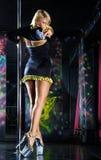 dancingowy słup Fotografia Royalty Free