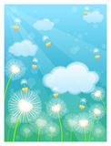Dandelion. Seeds being blown in the wind Stock Images
