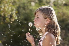 Dandelion. Young girl blowing a dandelion and dreaming about the future royalty free stock photos