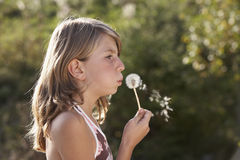 Dandelion. Young girl blowing a dandelion royalty free stock photography