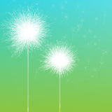 Dandelion. Abstract background with stylized dandelions Royalty Free Stock Images