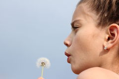 Dandelion. The girl blows on a dandelion Stock Images
