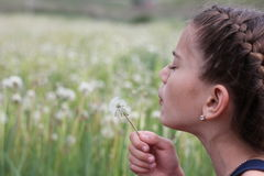 Dandelion. The girl blows on a dandelion Royalty Free Stock Image