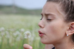 Dandelion. The girl blows on a dandelion Stock Photography
