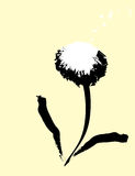 Dandelion #3 Royalty Free Stock Image