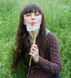 A dandelion. Young girl blows a dandelion Royalty Free Stock Photography