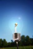 Dandelion. Light bulb with dandelion in core. alternative eco energy metaphor Royalty Free Stock Photography