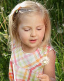 Dandelion. Close-up of a pretty little girl outdoors playing with a dandelion in summer Stock Photography