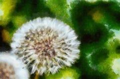 Dandelion art Stock Photography