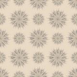 Dandelion background. Dandelion flower pattern texture  background Stock Images