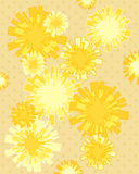 Dandelion background Stock Photos