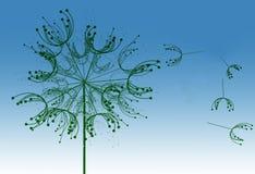 Dandelion background illustration Stock Photography