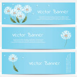 Dandelion banner on blue background Royalty Free Stock Images