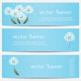 Dandelion banner on blue background Royalty Free Stock Images