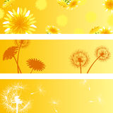 Dandelion banners set Stock Image