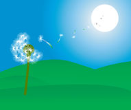 Dandelion blowing. To the sun, vector illustration vector illustration