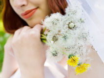Dandelion bouquet Royalty Free Stock Photography