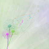 Dandelion bouquet with seedlings on music notes Royalty Free Stock Photos