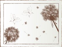 Dandelion and butterfly Royalty Free Stock Photography