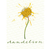 Dandelion with calligraphic name on calligraphic pattern Stock Images