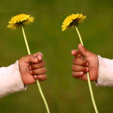 Dandelion child Royalty Free Stock Photography