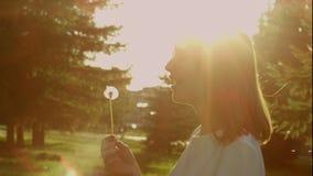 Dandelion clock in sunshine rays. Pretty young woman blowing a dandelion clock in sunshine rays in the garden stock video
