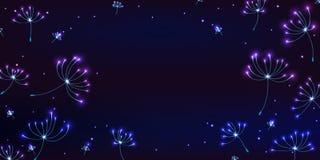 Dandelion colorful light horizontal banner Royalty Free Stock Photos