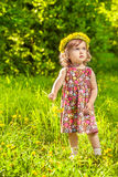 Dandelion curly girl stock photos