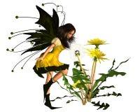 dandelion czarodziejki wiosna Obrazy Royalty Free