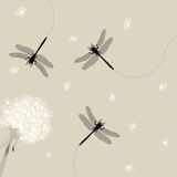 Dandelion and dragonfly Royalty Free Stock Image