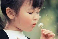 dandelion dziewczyna Obraz Royalty Free