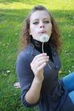 dandelion dziewczyny ręki chwyty Zdjęcia Stock