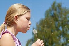 dandelion dziewczyny target962_0_ nastolatek fotografia stock