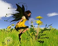 Dandelion Fairy with Springtime Background. Digital render of a Dandelion Fairy blowing dandelion seeds in a springtime scene Royalty Free Stock Images