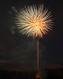 Dandelion Fire display. A wonderful display of fireworks resembling a dandelion royalty free stock images