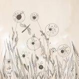 Dandelion floral background artistic Stock Photography