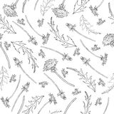 Dandelion flower, bud, leaves hand drawn vector ink sketch  on white background, Vector seamless pattern Stock Photo