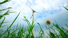 Dandelion flower clock and wind turbine electricity generator on cloudy sky. Background. Clean and renewable energy concept. Static shot stock video footage