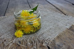 Dandelion flower in a glass jar with water. Stock Photo