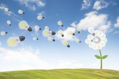 Dandelion flower idea lightbulb on sky nature concept inspiration. Royalty Free Stock Image